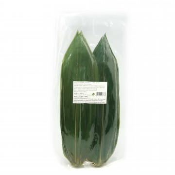 Hojas de bambu. 100...