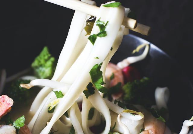 udon japonés