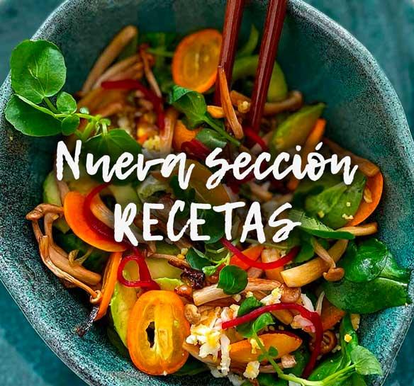 Sección recetas